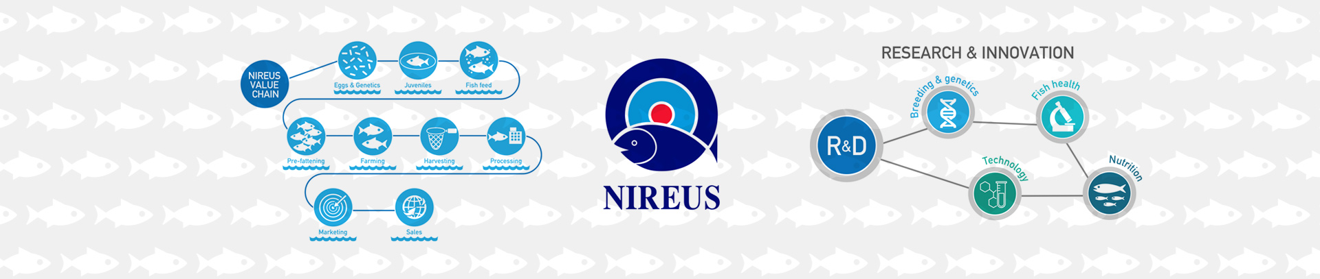 Nireys